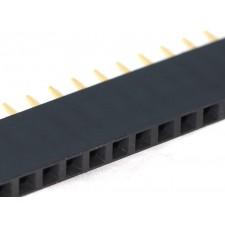 40 Pin 2.54 mm Single Row Female Pin Header
