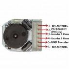 DC variklis su enkoderiu ir reduktoriumi (6V, 90RPM) N20