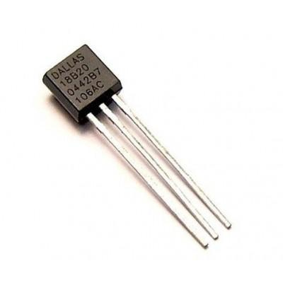 Skaitmeninis termometras DS18B20